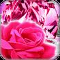 Pink Live Wallpaper 7.1 APK