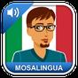 Aprender Italiano - MosaLingua 8.51