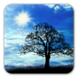 Blue Sky Free Live Wallpaper 1.4.13