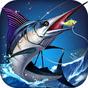 Fishing - Catch hungry shark