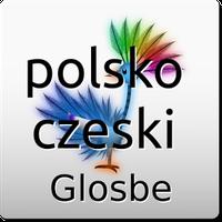 Ikona Polsko-Czeski słownik