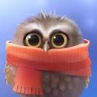 Little Owl Simgesi