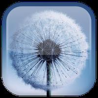 Ícone do Galaxy S3/S4 fundo dinâmicar