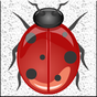 Smasher bug 8.1 APK