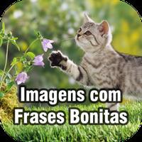 Imagens Com Frases Bonitas Android Baixar Imagens Com Frases