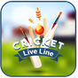 Cricket Live Line 1.3 APK