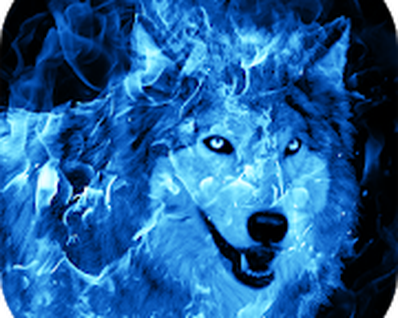 Ice Fire Wolf Wallpaper Android - Free