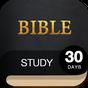 30 Day Bible Study Challenge - Offline Bible Study 2.0.7