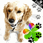 Cute Dog Theme for GO Launcher 3.0 APK