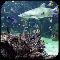Aquarium live wallpaper APK Simgesi