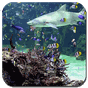 Aquarium live wallpaper 1.0.4 APK