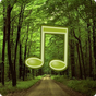 Forest Sounds Nature To Sleep 1.07
