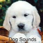 Dog Sounds 1.1.6 APK