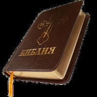 Библия. Синодальный перевод.