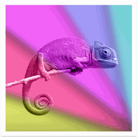 Ícone do Chameleon Color Adapting LWP