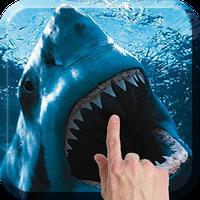 Shark Attack Live Wallpaper 41