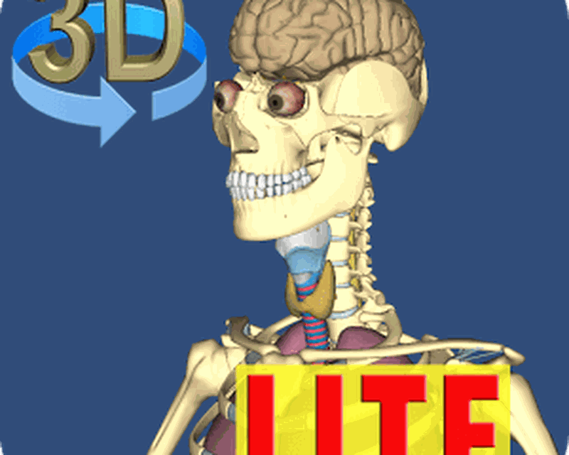 3d Bones And Organs Anatomy Android Free Download 3d Bones