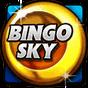 Bingo Pro - New US Bingo Games 2.22 APK