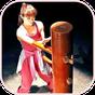 Wing Chun Kung Fu 1.0.6