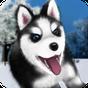 Falando Husky 1.2