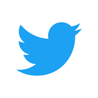 Icono de Twitter Lite