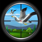 Bird Hunting 2.1