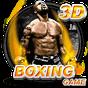 Boxe jogo 3D 3.2.2 APK