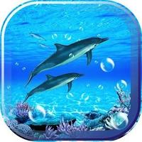 Ícone do apk Dolphin Sounds Live Wallpaper