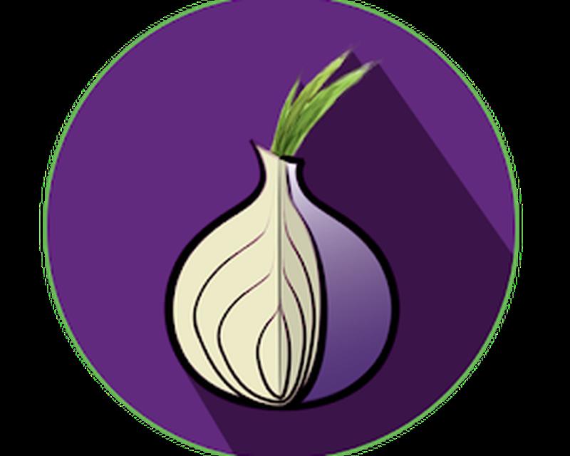 Браузер тор луковица hyrda apt get install tor browser hydraruzxpnew4af