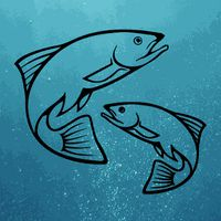 Icoană apk Fish Predictor Fishing Times