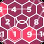 Rikudo - Number Maze 1.0