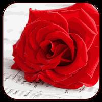 Downloaden Sie Die Kostenlose Romantische Bilder Whatsapp V20 Apk