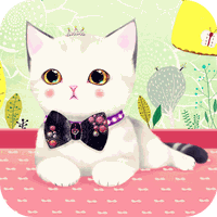Coco the Cat Launcher Theme apk icon