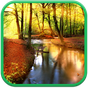 Autumn Forest Live Wallpaper 1.0.3