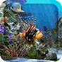3D Aquarium Live Wallpaper HD 1.3.6 APK