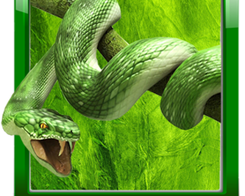 Snake Live Wallpaper