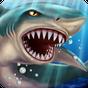 Shark World 7.11