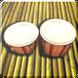 Bongo Drums (Djembe, bongo, conga, perkusi) 2.1