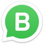 WhatsApp Business 0.0.104