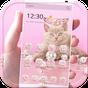 ธีมแมวสีชมพู rose gold 1.1.1