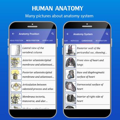 Grays Anatomy Atlas Android Free Download Grays Anatomy