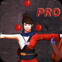 Archery : Okçuluk fizik elma atıcı Simgesi
