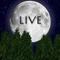 Luna llena Live Wallpaper v1.15.0 APK