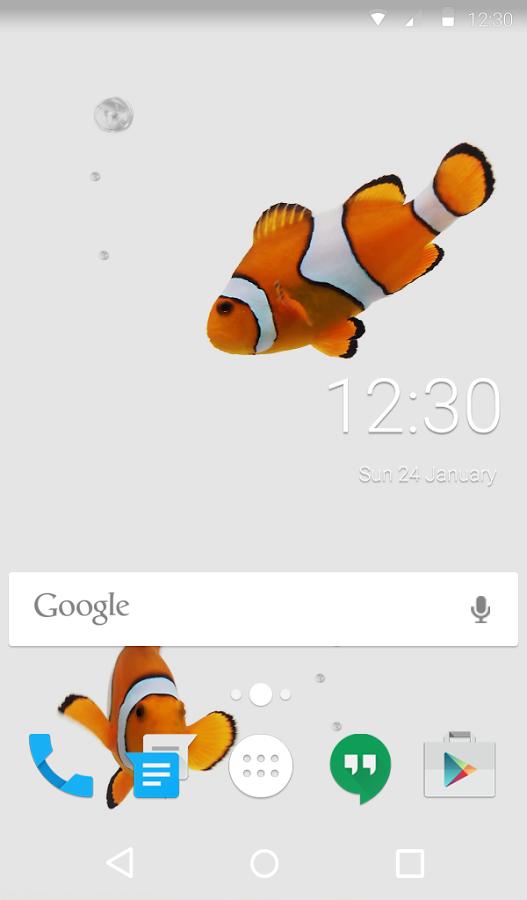 Teclado Animado Peixe Palhaco Android Baixar Teclado Animado Peixe