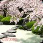 Zen Garden -Spring- LWallpaper v1.6 APK