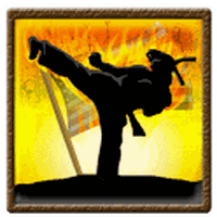 Ninja Karate Defence apk icon