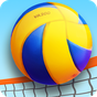 Volleyball de plage 3D 1.0.3