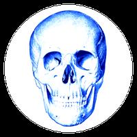 Anatomi Testi Simgesi