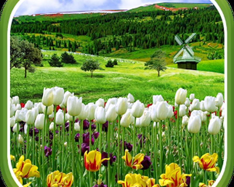 imagen-spring-nature-live-wallpaper-0big.jpg