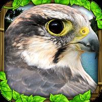 Falcon Simulator icon